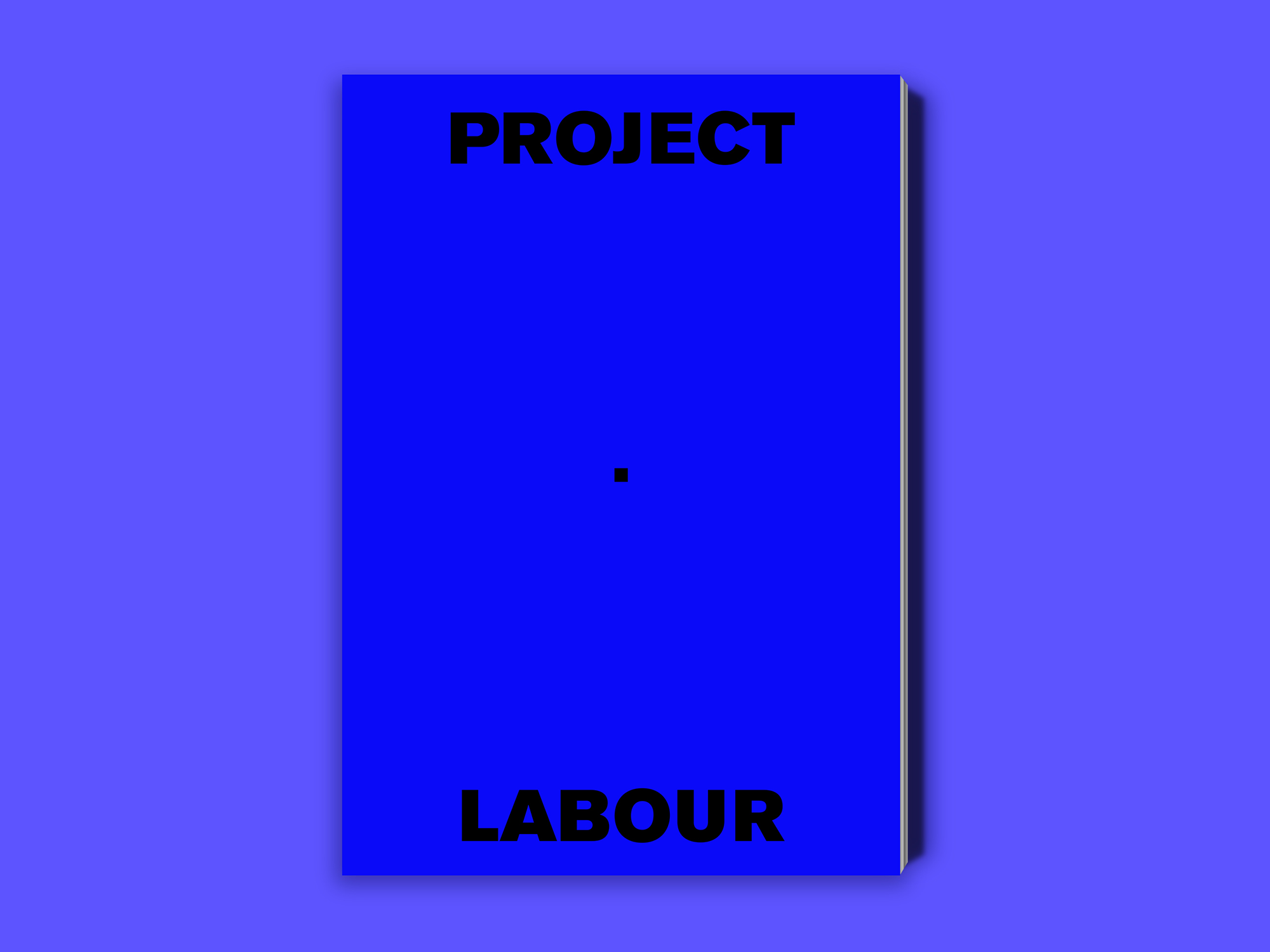 Dorijan Šiško Project Labour